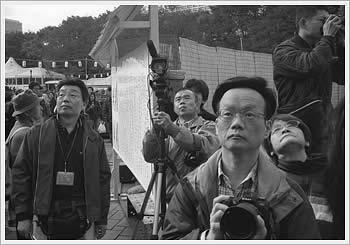 Hibiya Koen, Tokyo, November 23, 2003: click for larger image